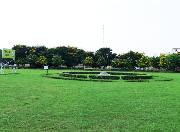 The Benefits of a Grass Court